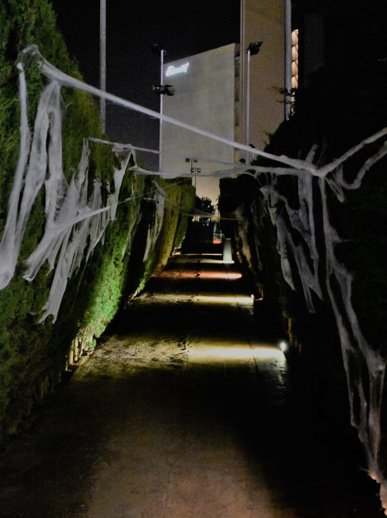 DLL Kids. Fiesta Halloween